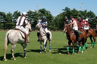 The beginning of a Polo Match